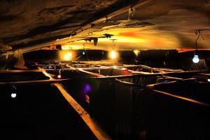 escape-zone-labirintus-press-photo-02